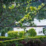 Highgrove Tea Estate Bunglow in Nuwara Eliya